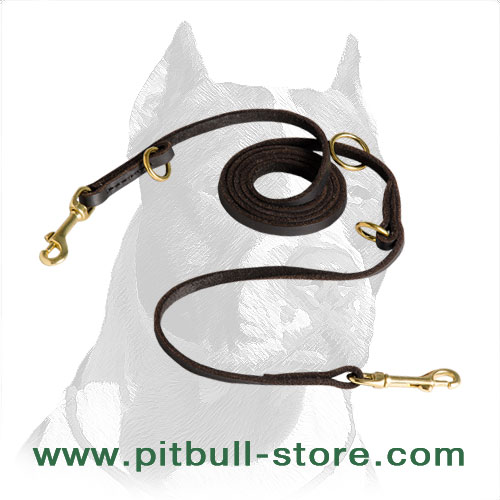 Pitbull dog leash escellent design