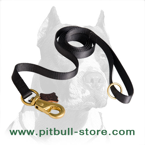 Dog leash for Pitbulls with brass hardware