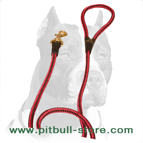 Long nylon dog leash decorated with chess ornament