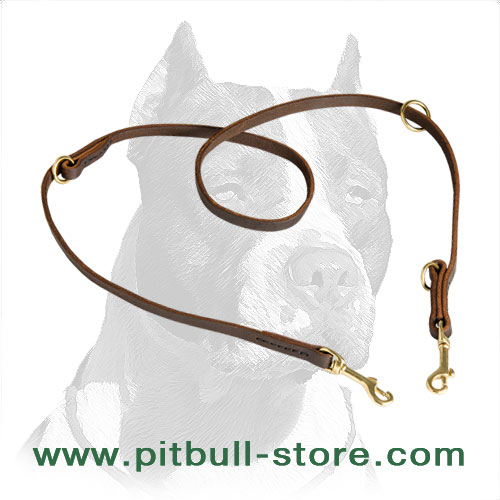 Pitbull dog leash hand stitched