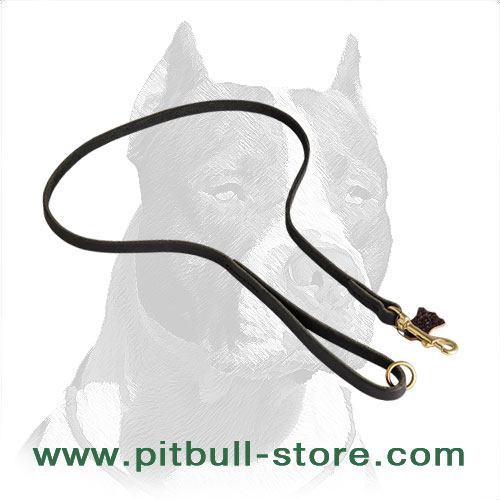 Super durable leather Pitbull leash with solid brass snap hook