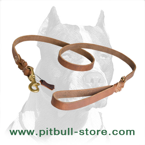 Leash for Pitbulls with braids from each end