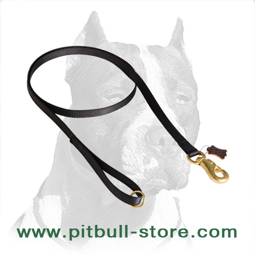 Leash for Pitbulls, simple design