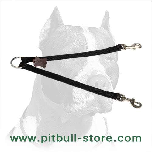 Nylon coupler for walking 2 Pitbulls