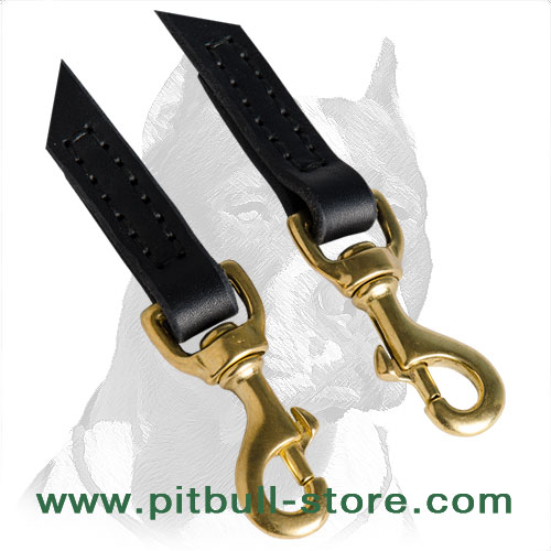 Leather coupler lead for 2 Pitbulls