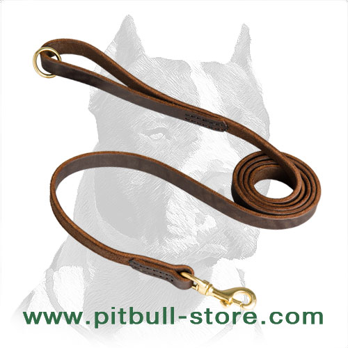 Leather dog leash with snap hook of solid brass