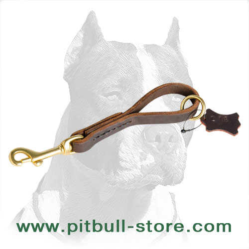 Strong leather dog leash for fast grab