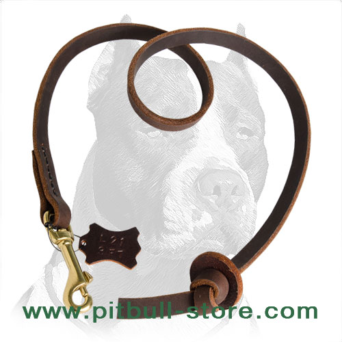Short leather dog leash for obedience training
