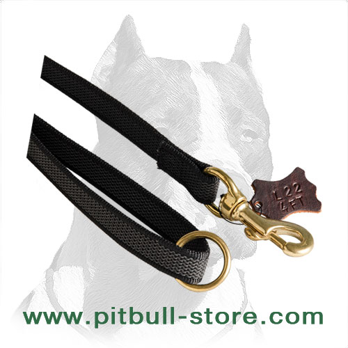 Top-quality Pitbull leash of nylon 3/4 inch wide