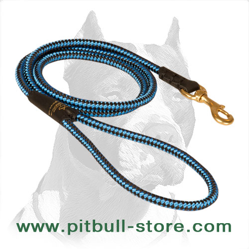Strong nylon dog lead with solid nickel plated snap hook