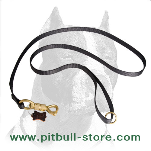 Dog leash for Pitbulls: nylon material + solid brass fittings