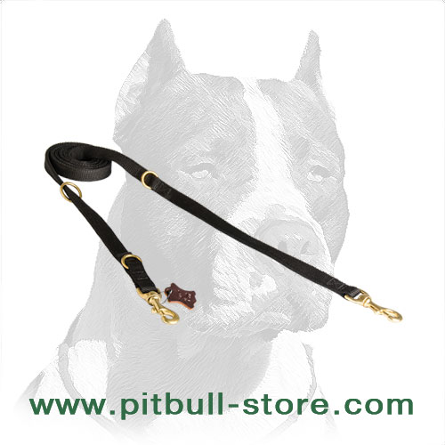 Nylon Pitbull dog leash, super strong and durable