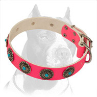 Lovely Pink Pitbull Dog Collar Decorated with Blue Stones