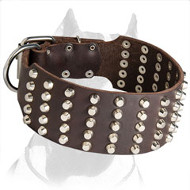 Studded & Strong Pitbull Dog Collar for Stylish Walks