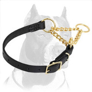 'Smart Control' Pitbull Martingale Dog Collar