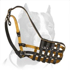 Baske-like ventilated muzzle for Pitbull
