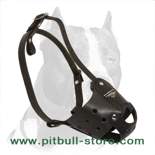 Strong dog muzzle for Pitbull