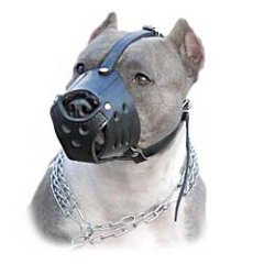 Free air flow muzzle for Pitbull