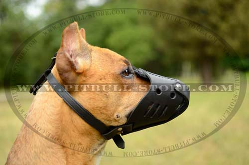 Handmade Pitbull Muzzle with adjustable straps