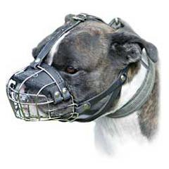 No biting wire cage Pitbull muzzle