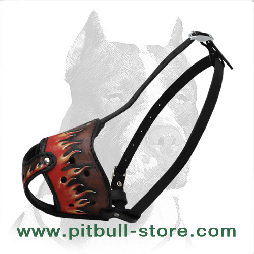 Safe Walking Comfy Leather Pitbull Muzzle