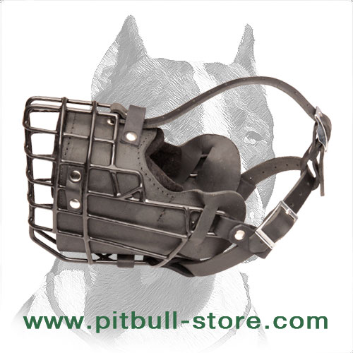 Pitbull leather muzzle sufficient air flow
