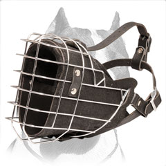 Pitbull leather muzzle fully padded