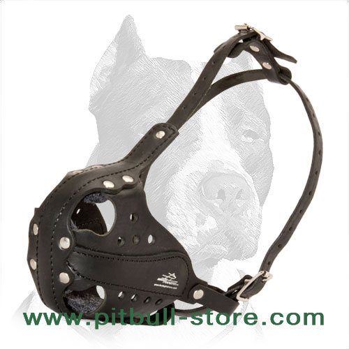 Pitbull leather muzzle handcrafted