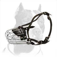 Wire basket Pitbull muzzle