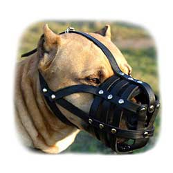 Well ventilated basket-like muzzle