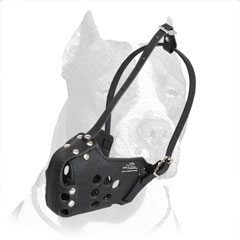 Muzzle for training and walking made of pure leather
