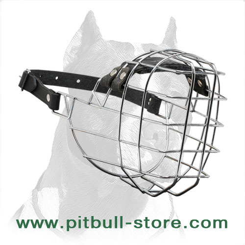 Dog muzzle for Pitbulls of rustproof polished steel