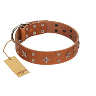 """Dreamy Gleam"" FDT Artisan Tan Leather Pitbull Collar Adorned with Stars and Squares"