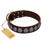 """Charming Circles"" FDT Artisan Brown Leather Pitbull Collar with Silver-like Studs"