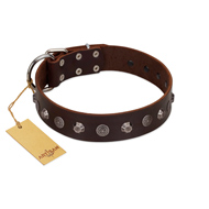 """Dark Chocolate"" Handmade FDT Artisan Brown Leather Pitbull Collar with Studs"
