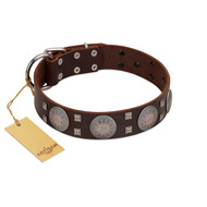 """Sun in Barchans"" Modern FDT Artisan Brown Leather Pitbull Collar with Engraved Stars on Round Plates and Studs"