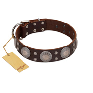 """Imperial Legate"" FDT Artisan Brown Leather Pitbull Collar with Big Round Plates"