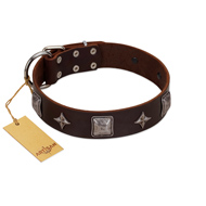 """Cold Star"" Designer FDT Artisan Brown Leather Pitbull Collar with Silver-Like Adornments"