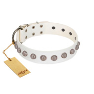 """Grandeur Dog"" FDT Artisan White Leather Pitbull Collar with Engraved Studs"