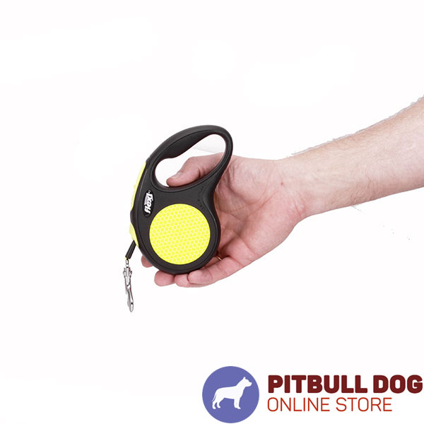 Small Canines Retractable Dog Leash for Everyday