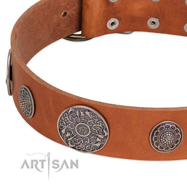 Rust resistant traditional buckle on natural genuine leather dog collar