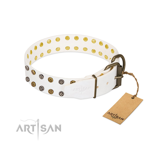 Genuine leather collar with awesome studs for your pet
