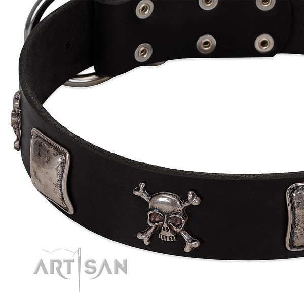 Durable embellishments on full grain leather dog collar