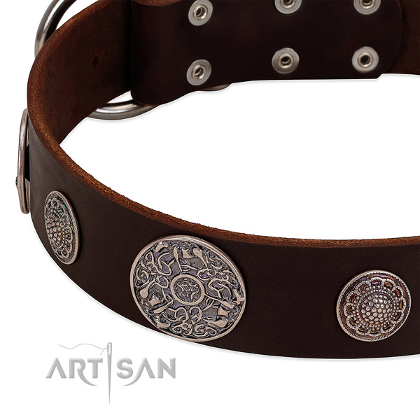 Corrosion resistant traditional buckle on full grain natural leather dog collar