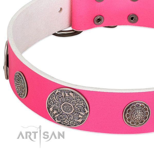 Reliable embellishments on full grain natural leather dog collar