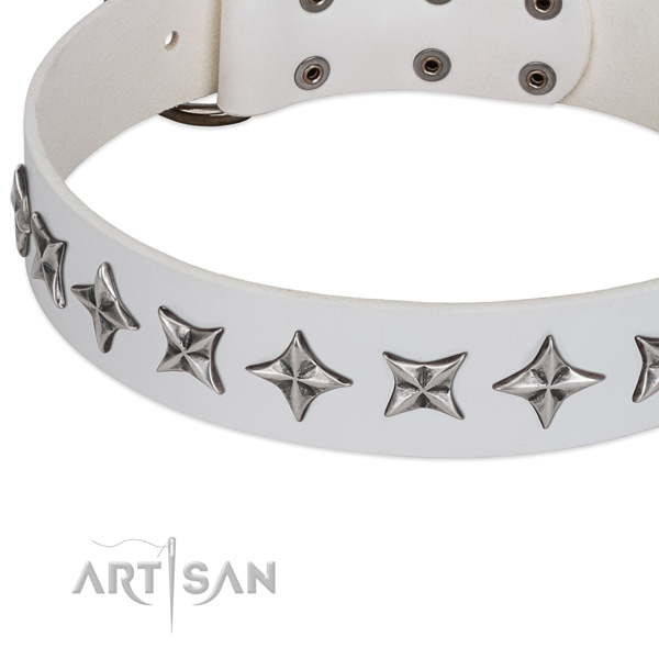 Daily walking embellished dog collar of finest quality leather