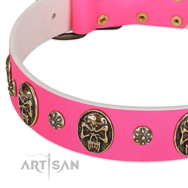 Decorated dog collar made for your stylish dog