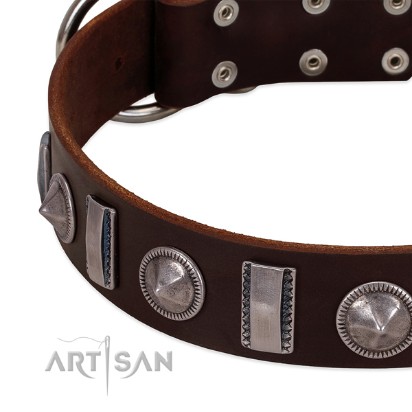 Inimitable embellished full grain leather dog collar for stylish walking