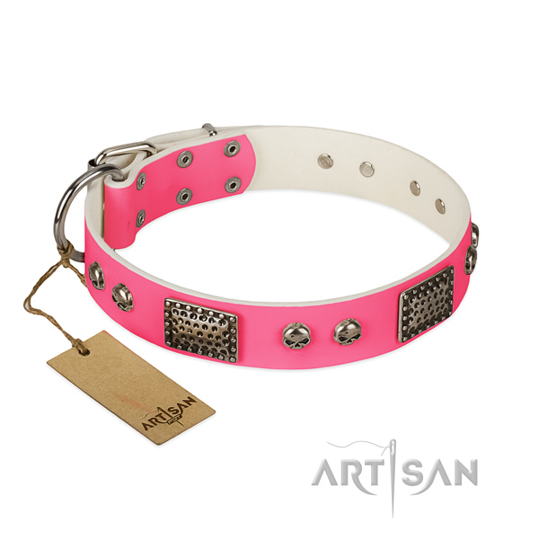 Easy adjustable full grain natural leather dog collar for walking your four-legged friend