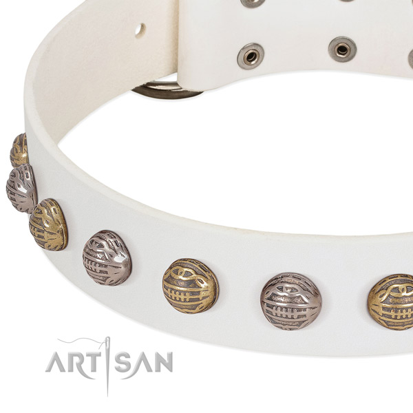 Rust resistant D-ring on full grain natural leather collar for fancy walking your four-legged friend